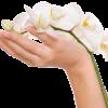 Trattamento mani antimacchia: provalo da...
